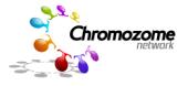 chromozomes logo